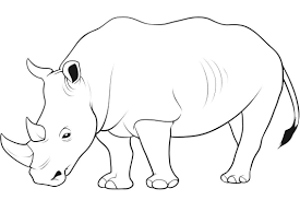Small Picture Kids Free Animal Coloring Pages Rhino Animal Coloring pages of