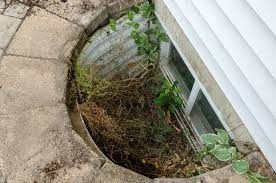 how to stop water from coming into your basement 14 reasons water is leaking into