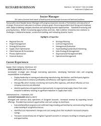 Senior Business Manager Resume Example