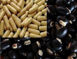 ขายส่ง เมล็ดหมามุ่ยอินเดีย mucuna pruriens พืชตระกูลถั่ว ถั่วเวลเวท Velvet  bean หมามุ่ย สมุนไพรเพื่อสุขภาพ อาหารเสริม บำรุงกำลัง ถั่วและธัญพืช ยาชู  หมากตำแย หมามุ่ยสกัด กาแฟหมามุ่ย 50 เมล็ด