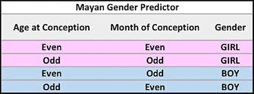 Image result for mayan gender calendar gif