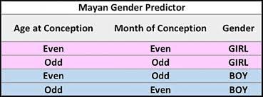 Image result for mayan gender calendar gif