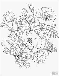 Spring Flowers Coloring Page Free Printable Pages And Color S