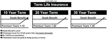 Joint Term Life Insurance Quotes Term Life Quote And Term Life Insurance Is The Only Insurance I 17