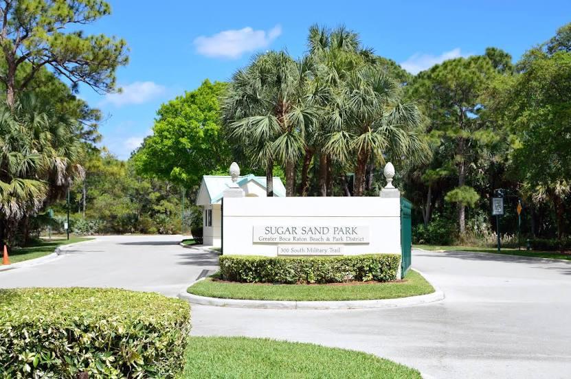 Boca Del Mar, FL Tree and Stump Services