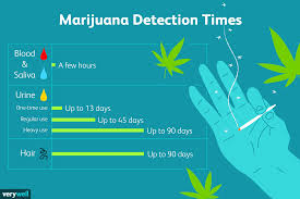 How Long Do Drugs Stay In Your System Chart How Long Does Marijuana Stay In Your System