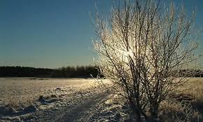 Bildresultat för sandvikens kommun vinter