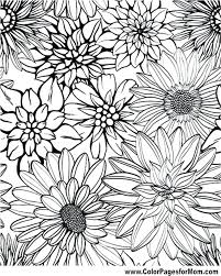 Detailed Flower Coloring Pages Staranovaljainfo