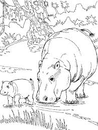 Hippopotamus Coloring Pages Cute Hippo Colouring Page Coloring Pages