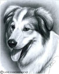 realistic dog drawing step by step. Perfect Drawing How To Draw Realistic Pets On Dog Drawing Step By P