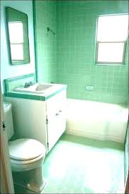 hunter green bathroom rugs awesome for teal sage accessories ideas lovely small images of patterned turquoise