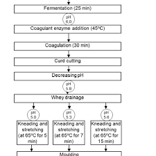 Flow Chart Of Processing Of Mozzarella Cheeses Made From