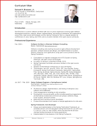 Resume For English Teacher Word Professional Resume Template