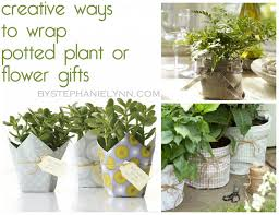 if picking up a potted plant or flower is on your gift gifting list this weekend don t settle for those plain plastic pots or cellophane instead take a