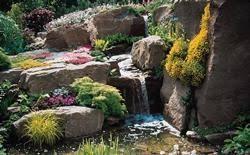 Idee Per Abbellire Il Giardino : Idee per il giardino paper