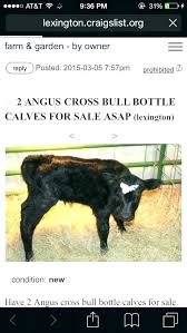 craigslist farm and garden phoenix az farm and garden farm garden farm and gardens finest farm