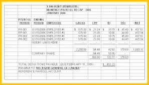 Excel Resume Examples Payroll Summary Report Template Certified Example Excel Year