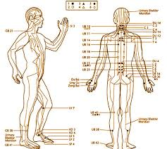 oklahoma skeptic acupuncture for the beginning skeptic Meridian Lines Body Map Meridian Lines Body Map #33 meridian lines body map