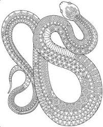 Small Picture Top 25 Free Printable Snake Coloring Pages Online Free printable