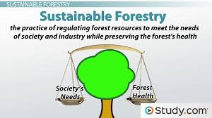 environmental sustainability definition and application video environmental sustainability definition and application video lesson transcript com