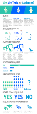 Veterinarian Technician Salary Veterinary Technologist Job Description Education And
