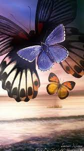 Blue Butterfly HD Wallpapers For Mobile ...