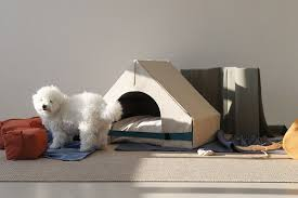 dog house gizmodo cz