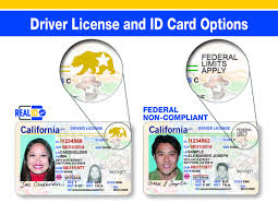 Make Your Ca Options Options Must Dmv Visit Id Federal For Sure Non-compliant License Driver Know Id A On To You