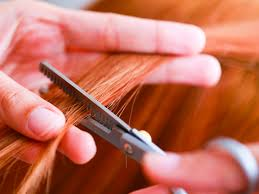 Image result for Split hair can be cured with a product