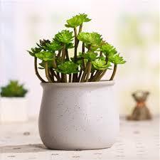 office flower pots. Decorating Office Flower Pots