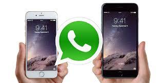 Actualización de WhatsApp para adaptarse al iPhone 6 y iPhone 6 Plus