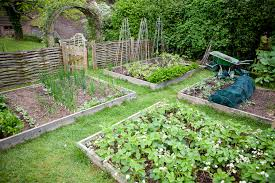 how to build a raised bed co op