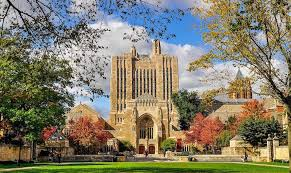must essay introductions from yale admissions essays admitsee  more competitive how can students step up and turn this dream into a reality take a look at the following essay intros from yale students on