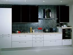 European Design Kitchen Cabinets European Style Kitchen Cabinets Sleekness Beauty And