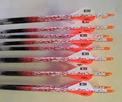 Buy Beman Ics Bowhunter 340 Carbon Arrows W Blazer Vanes