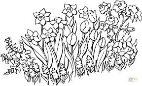 Free Printable Flower Garden Coloring Pages For Adults A Page Of 0