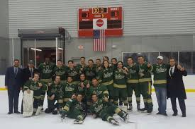 Usf Ice Bulls Headed To Nationals And Need Your Help