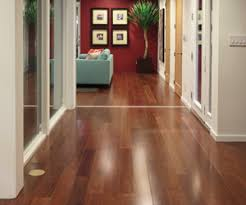 lyptus hardwood flooring makes a dramatic statement inside but leaves small footprint on our world outside is harder than oak less expensive lyptus wood r68 wood