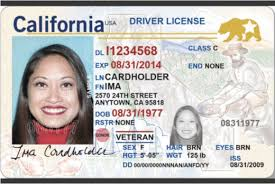 About News Report California You Need Kqed Driver's What To Licenses The Know 'real-id'