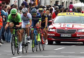 body size of tour de france cyclists