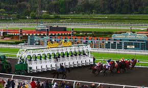 Breeders Cup Charts 2010 Daily Racing Form Breeders Cup Wagering Hits All Time High