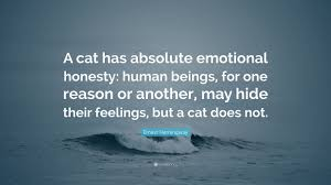 ernest hemingway quote ldquo a cat has absolute emotional honesty ernest hemingway quote ldquoa cat has absolute emotional honesty human beings for