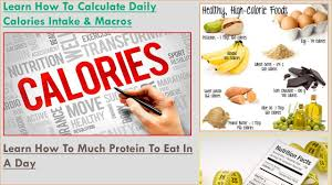Make Your Own Diet Chart Learn How To Create Your Own Diet One Easy Method