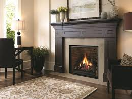 gas fireplace insert ventless dimensions natural reviews dallas tx