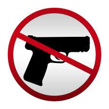 new congress will see gun control legislation majority  in