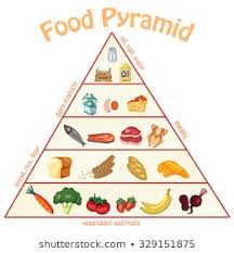 Food Group Pyramid Chart