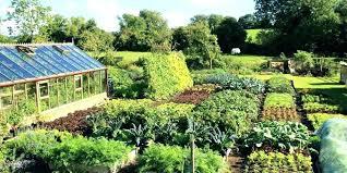 vegetable garden catalogs garden catalogs vegetable organic plants for heirloom organics gardening catalogue mail