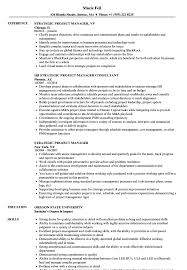 Project Manager Resumes Examples Strategic Project Manager Resume Samples Velvet Jobs 12