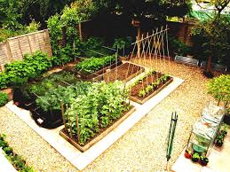 how to lay out a garden. Full Size Of Kitchen Vegetable Garden Layout Plans And Spacing How To Start A Patch Starter Lay Out