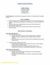 Ability Summary For Resume Fresh Professional Skills Resume Elegant